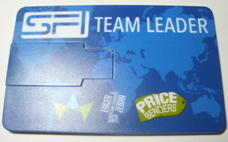 sfi-team-leader-final